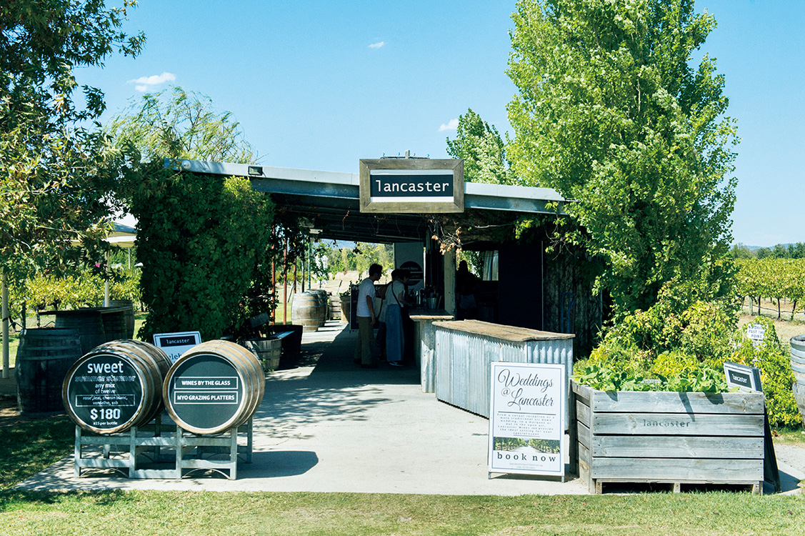 """スワンバレーの〈lancaster〉に豪華なレストランは併設していないが、簡素な""""小屋""""でのブドウ畑を眺めながらのテイスティングは、開放的で心地よい。ワインも秀逸。 https://lancasterwines.com.au"""