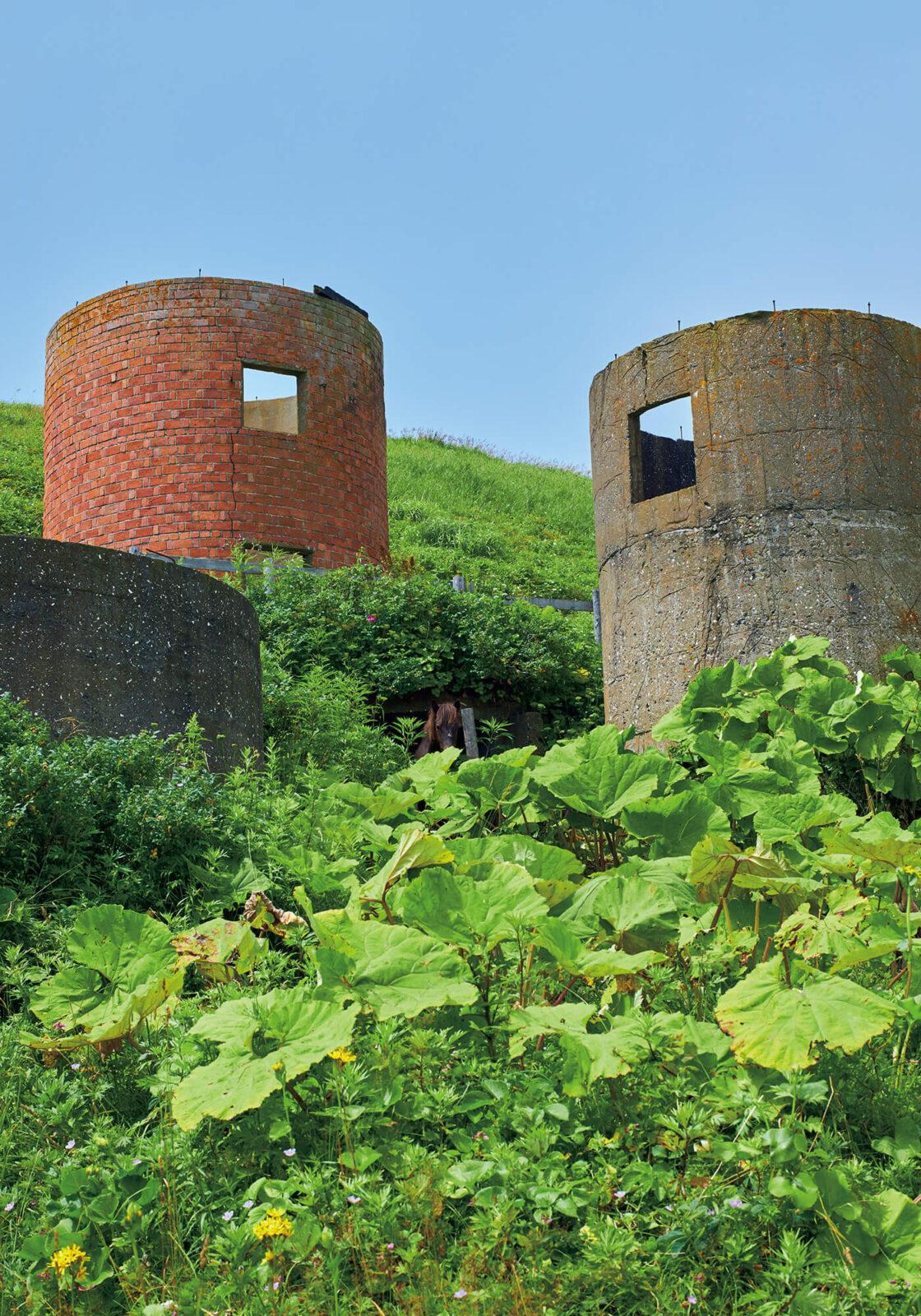 フットパス内にある〈旧馬場牧場〉。昭和初期、当時の牧場主がここで半農半漁の生活をしていた。円筒形の貯蔵庫であるサイロは、今では珍しい煉瓦とブロックでできている。
