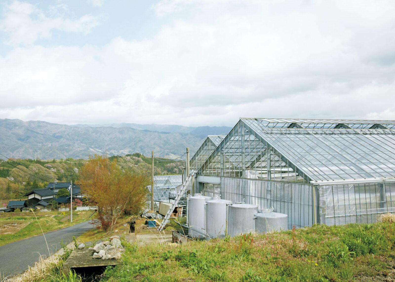 飯島町七久保に点在する、計4棟の温室。