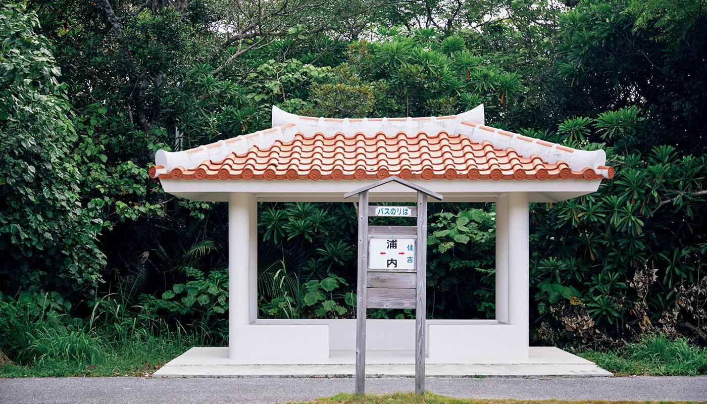 西表島には日本最南端の路線バスが走る。
