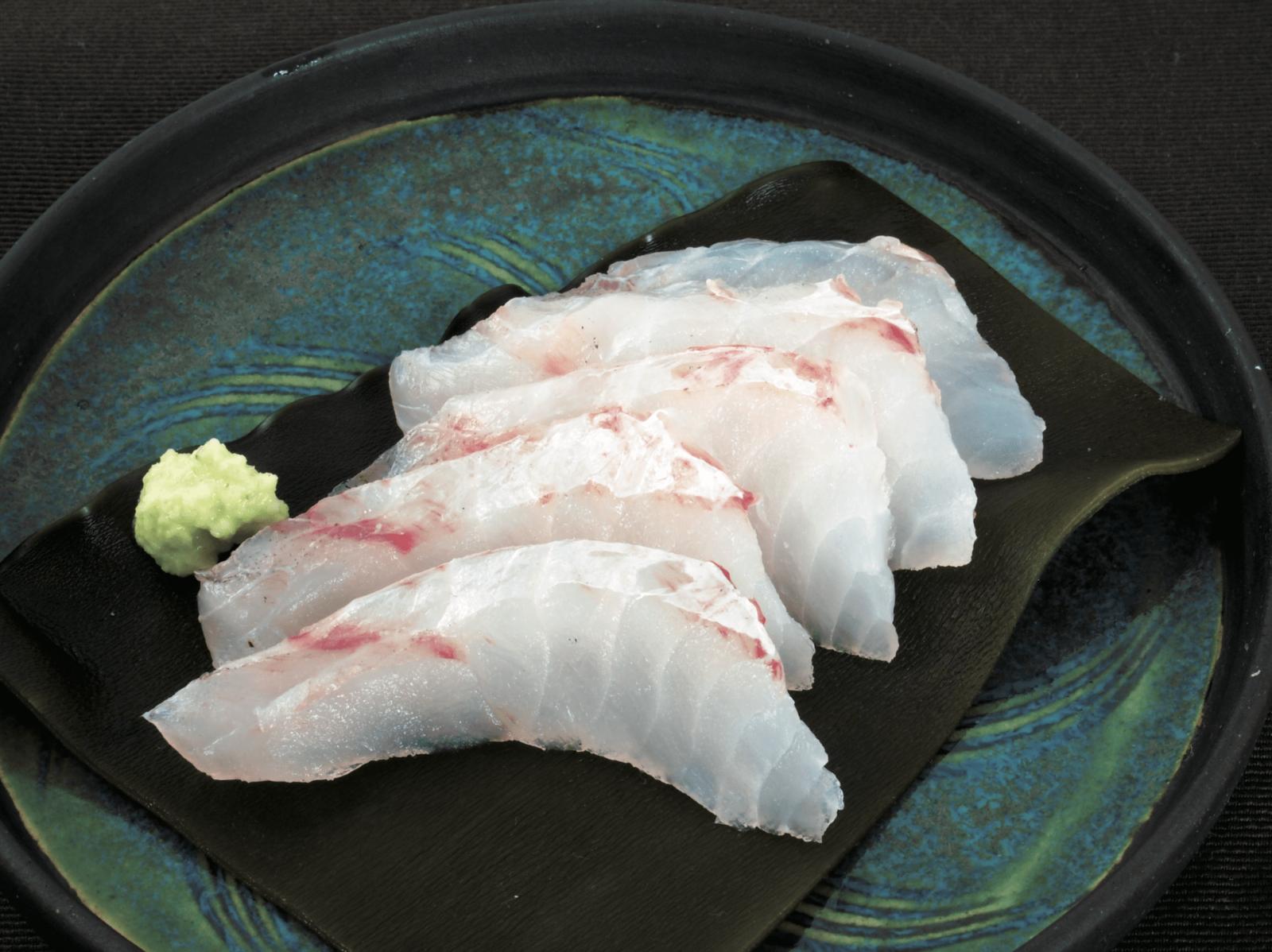 ヨロイイタチウオ 魚 ブルータス