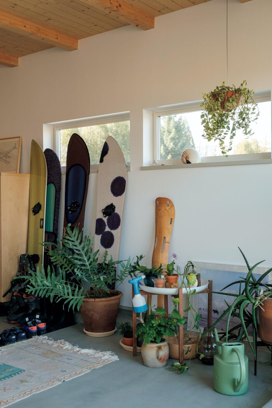 グリーンルームの一角。夫婦で育てる観葉植物の越冬には欠かせないスペースでもある。冬は富良野やトマムにスノーボードに出かけるという2人。ボードはすべてゲンテンスティック。