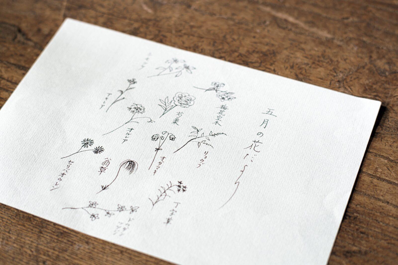 「季節の花だより」に同封される花材のイラストや説明は山下さんの手書き。飾り方の参考になる写真や生け方のコツもメールで届く。