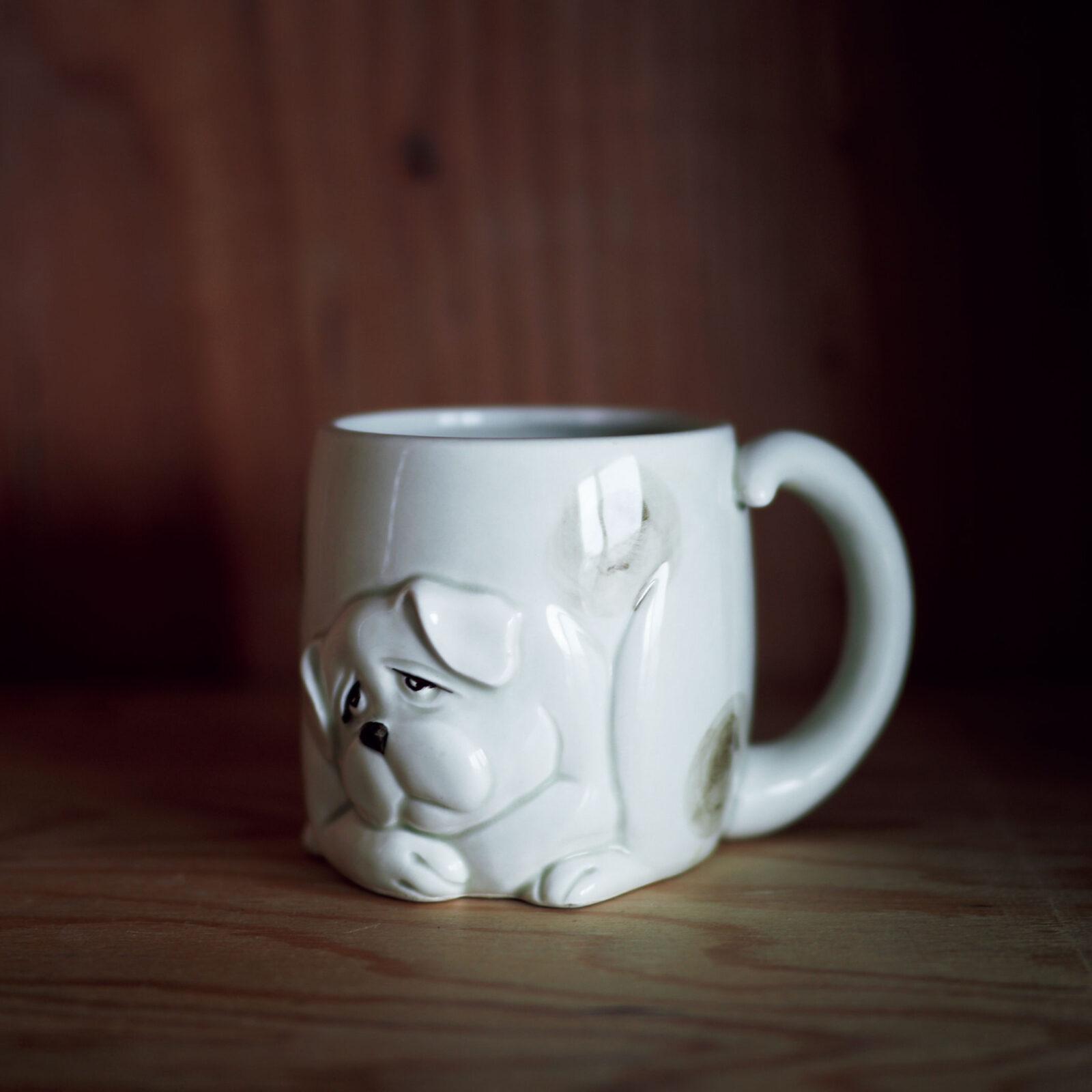 菊池亜希子(モデル、女優)〈フィッツ&フロイド〉のマグカップは、一緒に暮らした犬の面影もあってお気に入り。編集者の友達からの贈り物です。容量たっぷりなので、集中したい時はこれを使います。