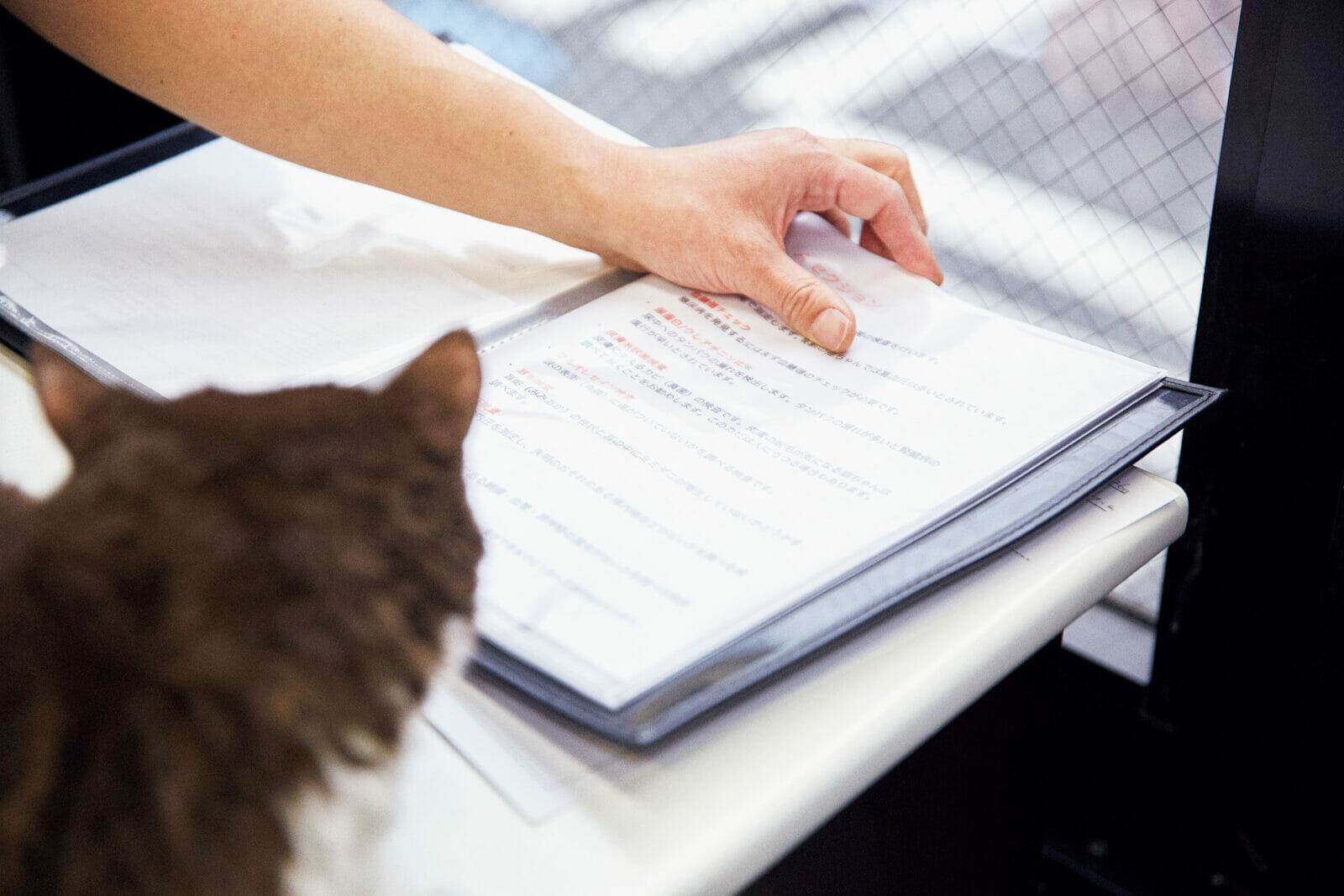 問診して検査項目を決定だんごさんに聴診器を当てた服部先生。「心臓も肺も音は問題なし。口の中も大丈夫。今日はどんな検査をしたいですか?」「初の猫ドックなのでお任せします」と田部井さん。