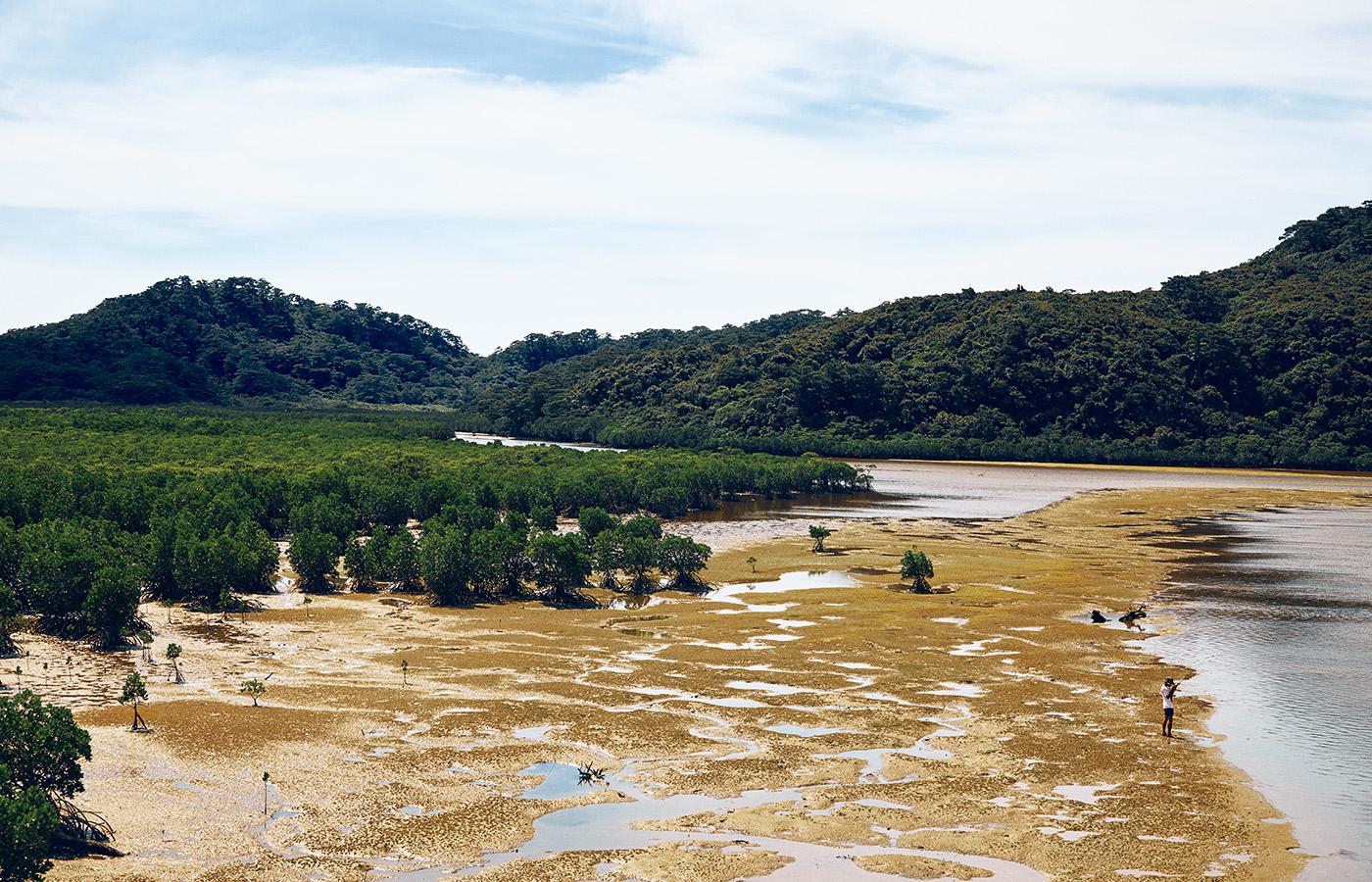 約90%が亜熱帯のジャングルという西表島は、原生林が海岸近くまで迫り、河口域にはオヒルギやヤエヤマヒルギのマングローブが広がる。釣り人が立っている場所は満潮になれば、すべて海水と河水に覆われてしまう。