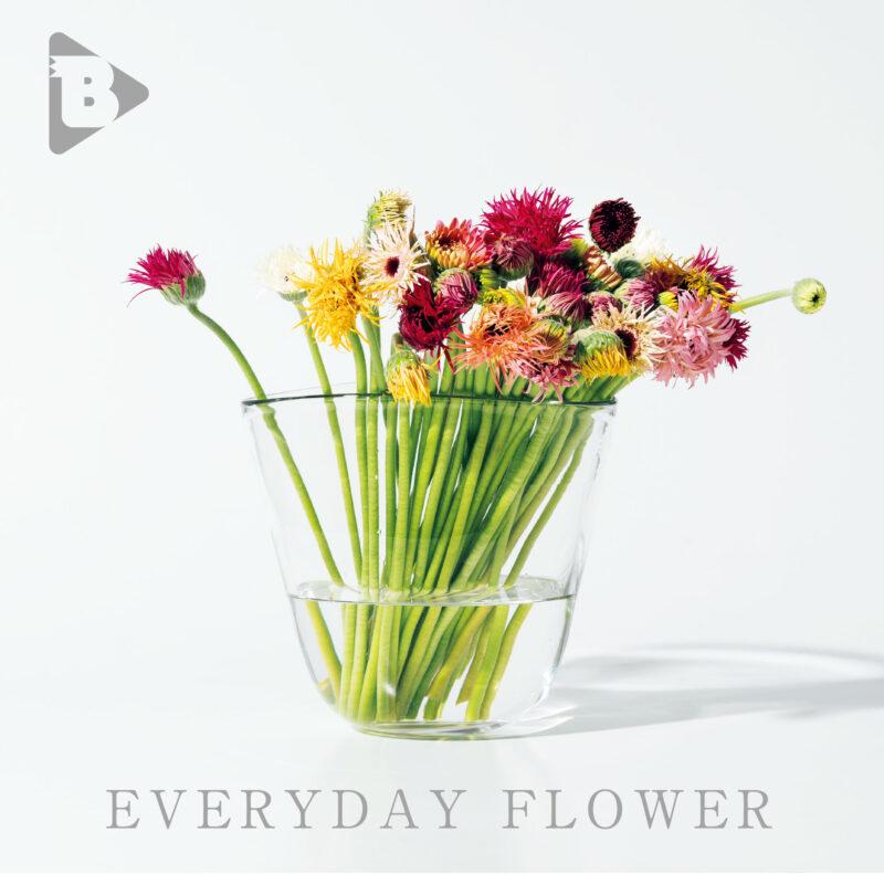 デイリーブルータス表紙 Everyday Flower