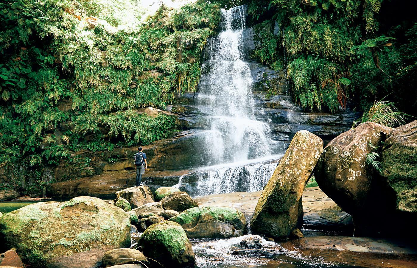 大自然のテーマパーク、西表島の秘境の一つ、ナーラの滝。階段状に水が流れ落ちる雄姿と広くて深い滝壺は「幻の滝」ともいわれる。ジャングルトレッキングとマングローブカヤックで行くガイド付きツアーに参加を。