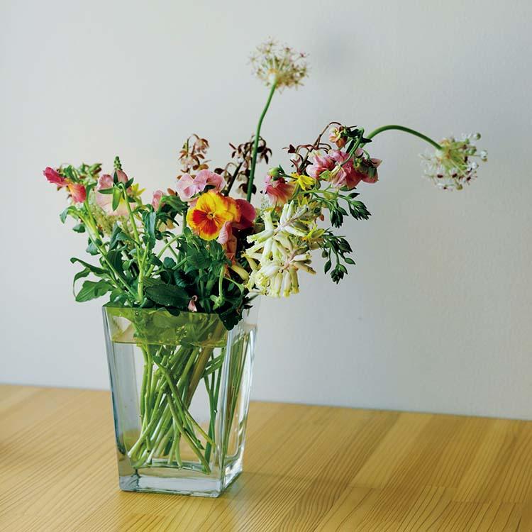 伊藤亜紗が好きな花