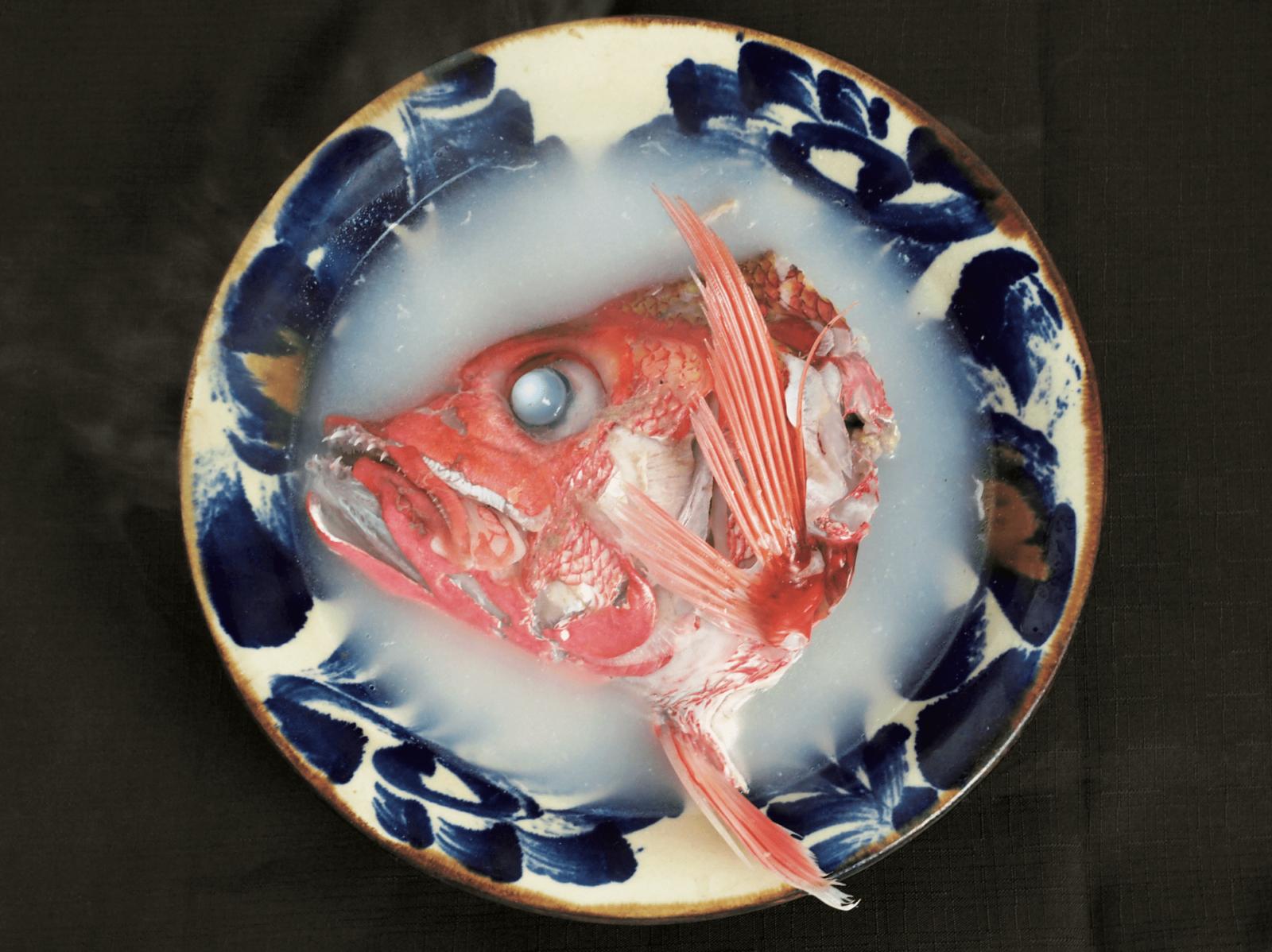 ハチジョウアカムツ ブルータス 魚