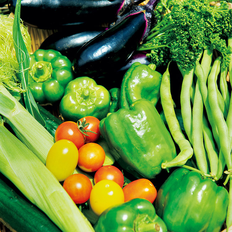 平野太呂が収穫した野菜