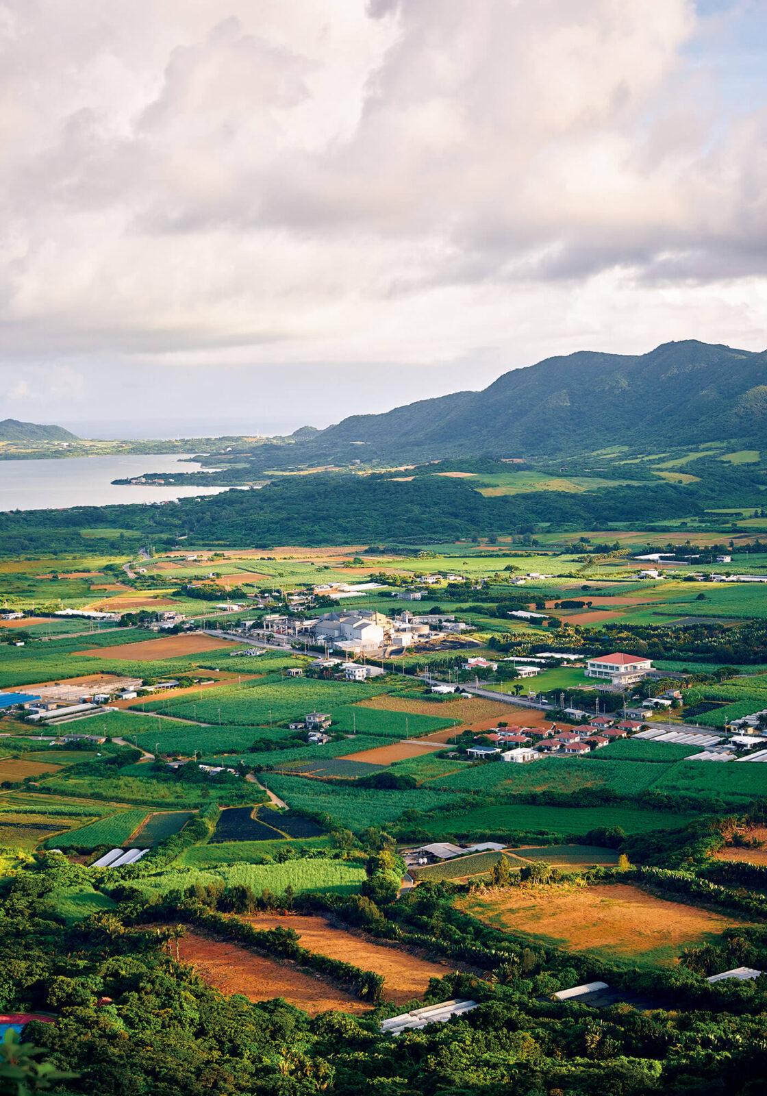 〈南の島の展望台〉から。北に於茂登岳、西側に名蔵湾を望む。海と森に囲まれ、広大なサトウキビ畑が広がる石垣島。昔ながらの伝統文化が息づく島は、自然と人間の暮らしがうまく共存している場所なのだとわかる。