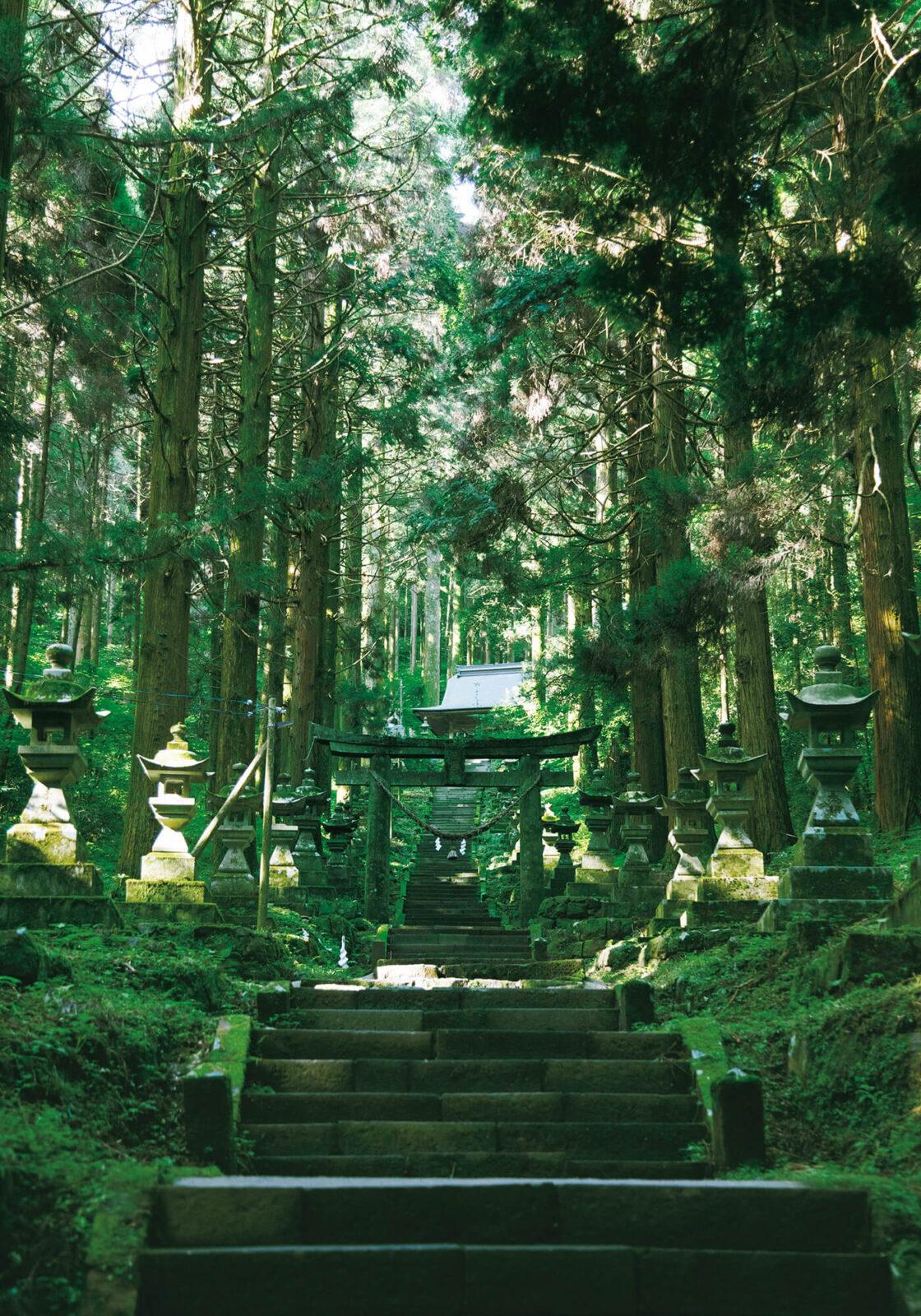 阿蘇随一のパワースポットともいわれる、上色見熊野座神社。97基の石灯籠を左右に石段を進むと、1段ごとに自分が森に溶けていく。本殿をさらに奥へと進めば、鬼八法師が蹴破ったといわれる「穿戸岩」がお目見えする。