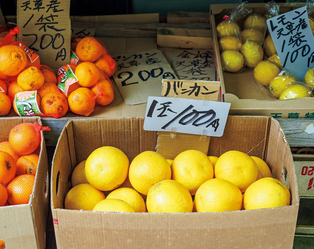 天草は果樹栽培も盛んで、柑橘は種類も豊富。町の商店や道の駅などで、デコポンや晩柑が驚くほど安い価格で販売している。