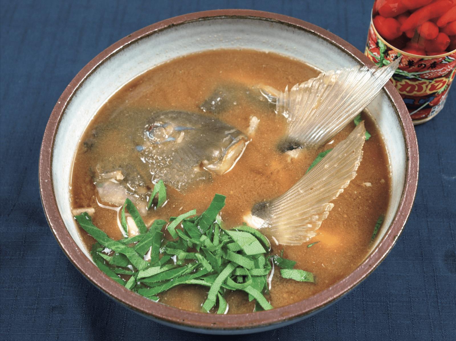 シロクラベラ ブルータス 魚