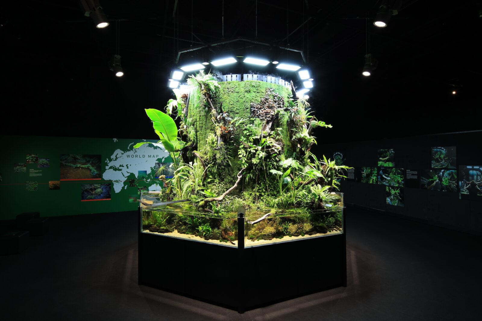 NATURE AQUARIUM EXHIBITION 2021 TOKYO 熱帯雨林雰囲気ムンムンのネイチャータワー360°