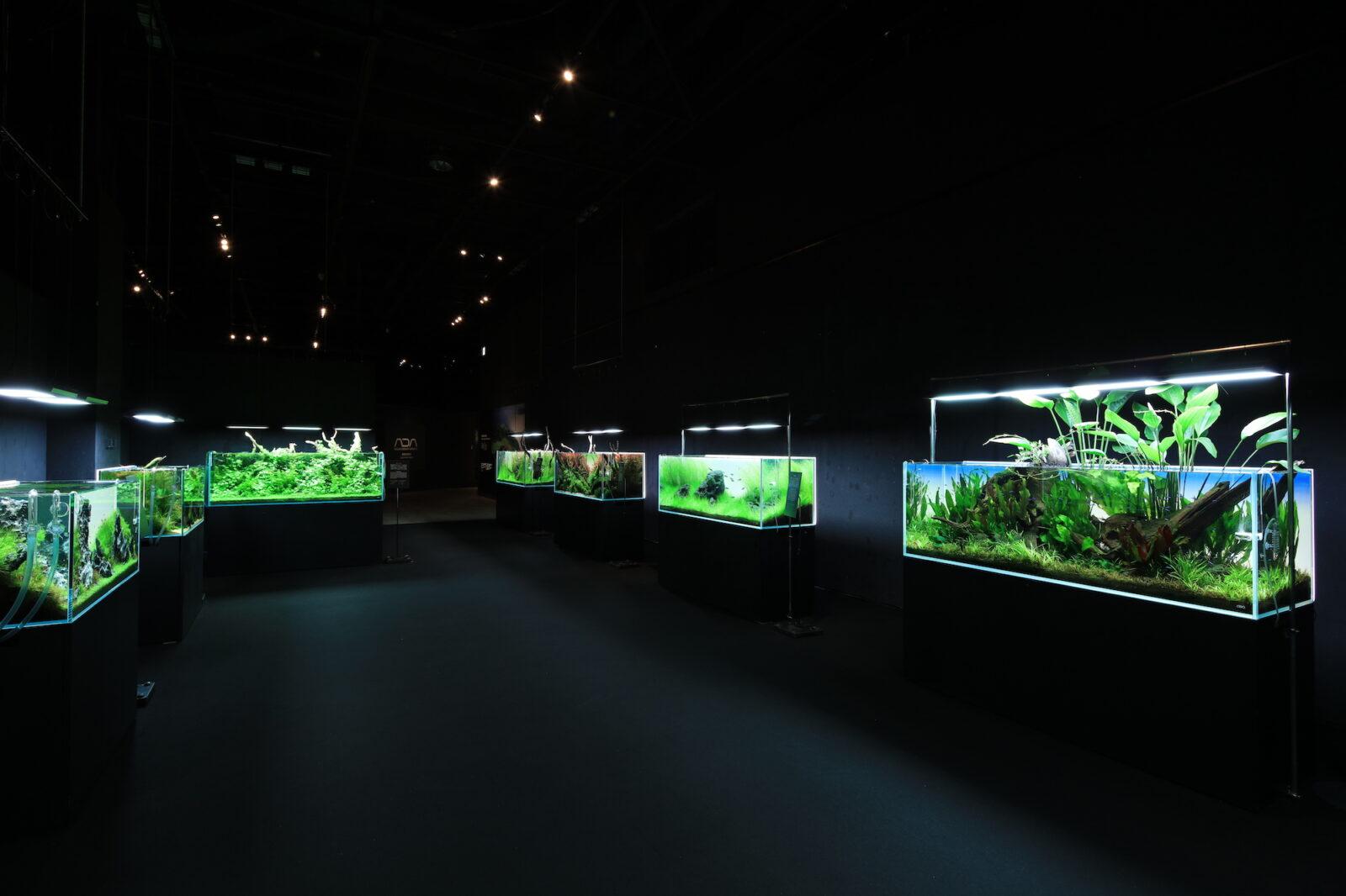 NATURE AQUARIUM EXHIBITION 2021 TOKYO ADA水景クリエイターによる作品の数々